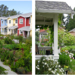 Cohousing communities are intentional by nature, with residents purposely coming together around shared values and commitments. In Pocket Neighborhoods, a sense of community may arise naturally among neighbors by the fact of living around a commons, and may be augmented with more intention. (left: Petaluma Avenue Cohousing /photo by Grace Kim; right: Greenwood Avenue Cottages /photo by Karen DeLucas)
